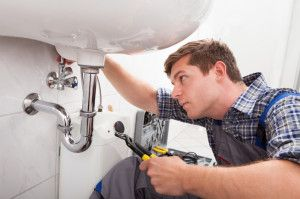 Which Denver Plumber To Choose?